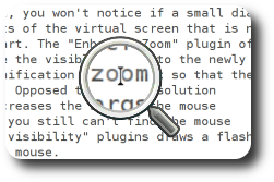 [picture showing the compiz screen magnifier]